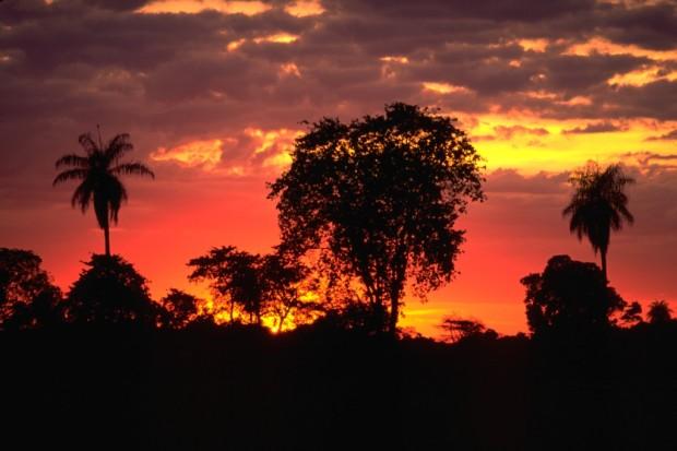 Reserva Natural Salto Morato - Crédito: Haroldo Palo Jr.