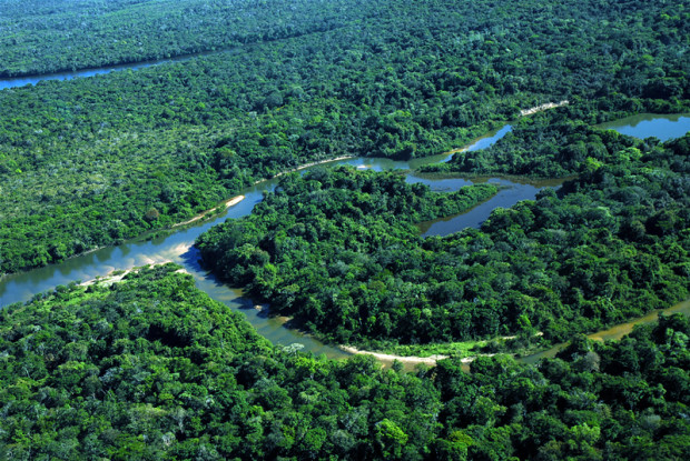 Municípios têm até março para entregar documentos do ICMS Ecológico / Foto: ASCOM-NATURATINS