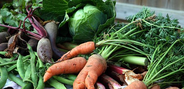vegetais-organicos-brasil