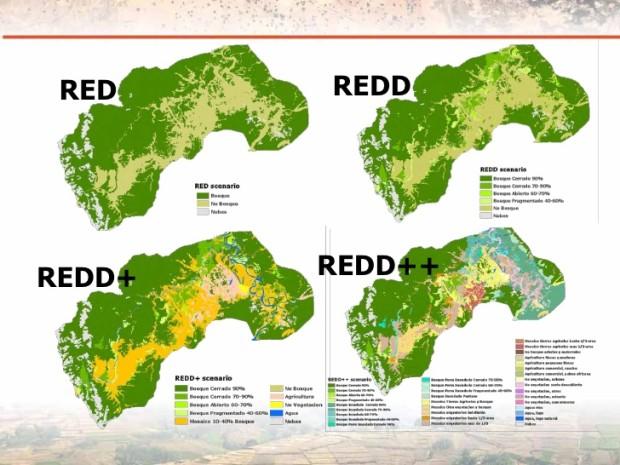 REDD, REDD+, REDD++