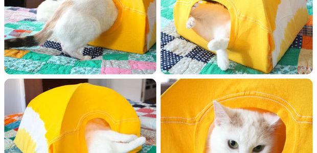 Casinha de gato sustentável|Fonte: Monte Castelo