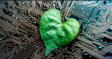 Seis aplicativos e plataformas on-line para se conectar com a natureza